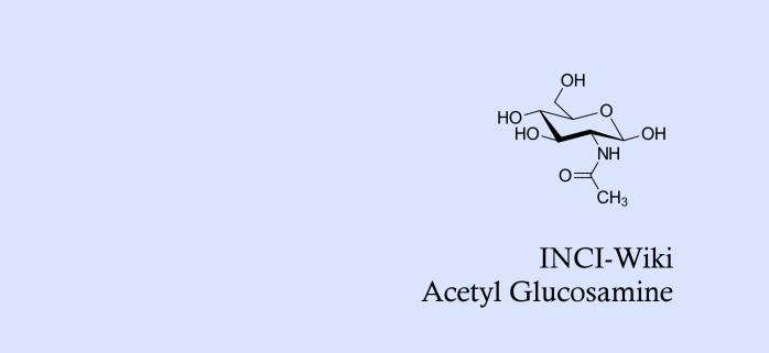 Acetyl Glucosamin_schmal.png